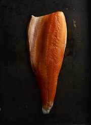 food photography salmon arctic char skin side down flesh