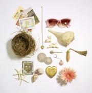 photography seashells sunglasses starfish nest locket