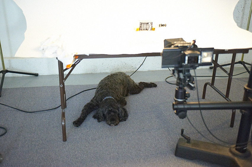 Benny in the studio